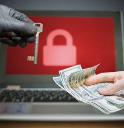 Should You Pay An Online Ransom?